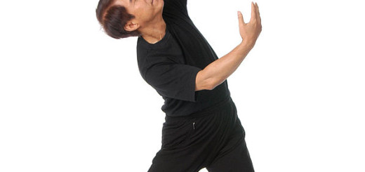Li Junfeng, Gründer von QiGong, licensed under the Creative Commons Attribution-ShareAlike 3.0 License